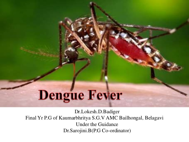 Brazil says deaths from dengue up 163% in first half of year